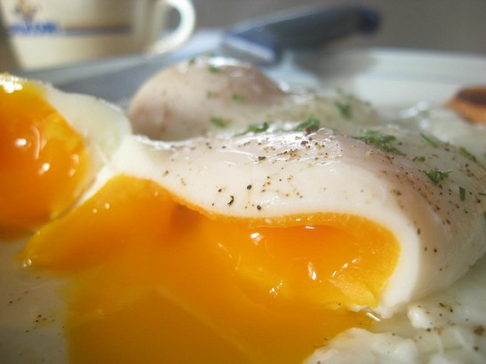 Eggs diet food
